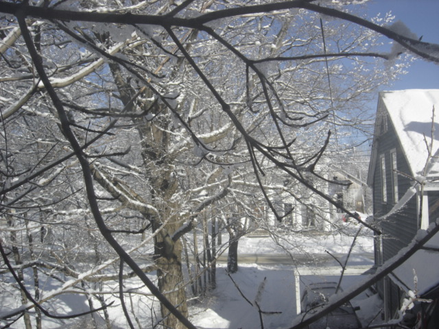 February 2007 Snow photos in Montague Center.